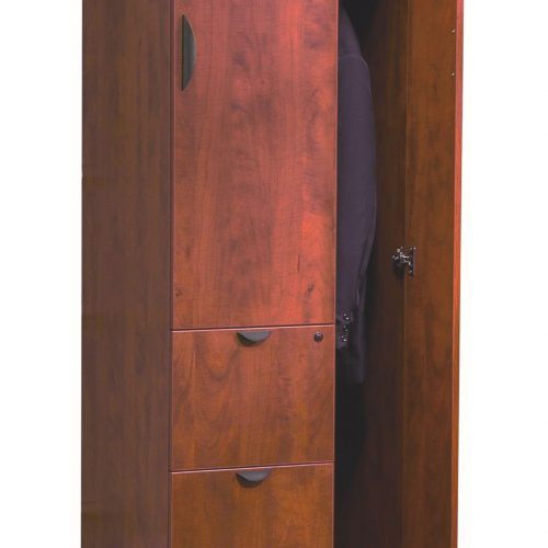 Storage Cabinet 3